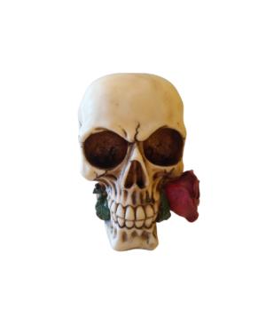 Caveira Decorativa Rosa