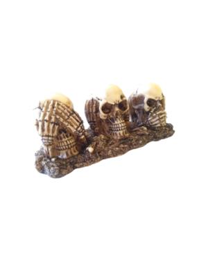 Caveira Decorativa Sábias